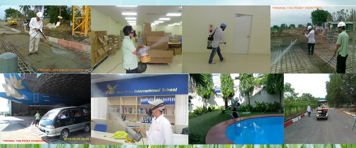 Trọng Tín cung cấp dịch vụ diệt muỗi xử lý côn trùng hàng đầu tại tp hcm