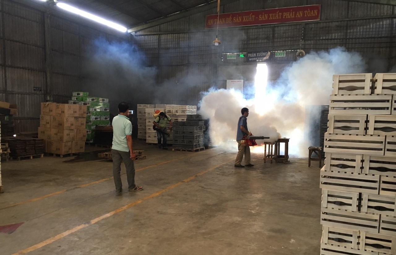 Phun khói diệt nhện và côn trùng ho nhà kho bằng k10Sp - Trọng Tín